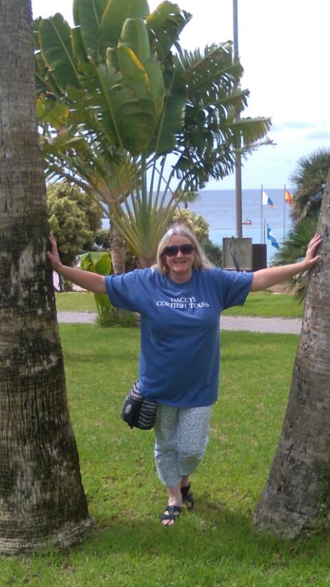 Gill Puerto Rico, Canary Islands