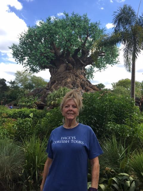 Nanette, Disney World